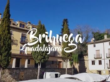 Visita a los campos de lavanda de Brihuega (Guadalajara)
